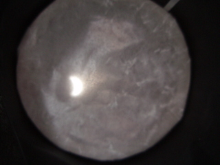 P7220178